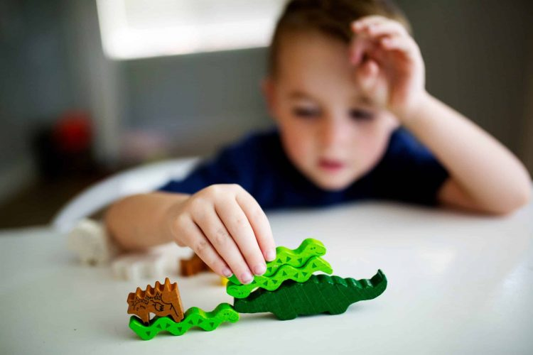 boy-playing-a-stacking-game-with-animals-6T2RAXC